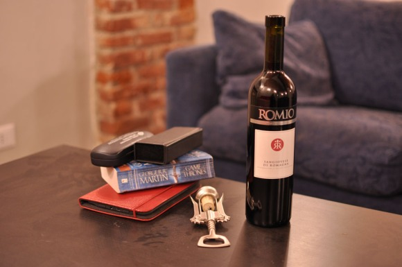 Wine, books and couches in the basement of Tomato Backpackers Hotel on a rainy day in Turin, Italy