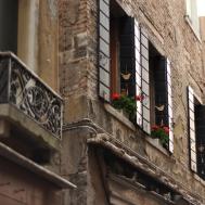 Flowers in Venice