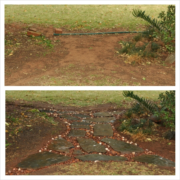 The before and after of a sad stretch of lawn in our garden.