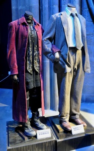 Costumes - Nymphadora Tonks and Remus Lupin