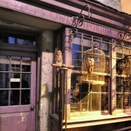 Set detail - Eeylop's owl emporium in Diagon alley